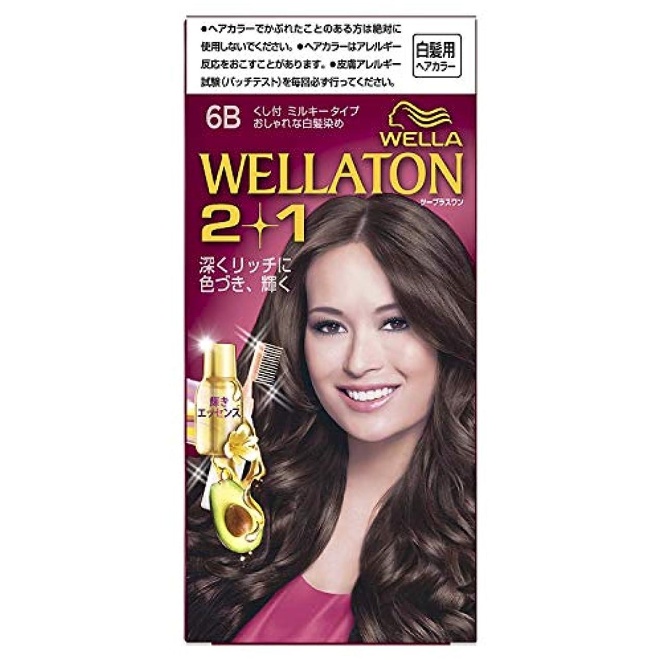 腹痛主張する試用ウエラトーン2+1 くし付ミルキータイプ 6B [医薬部外品] ×6個