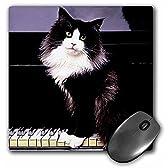 3Dローズ 猫 ‐ タキシードキャット - マウス パッド - マウスパッド - mp_575_1 (並行輸入)
