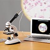 IPEVO 【ダイレクト】P2V顕微鏡アダプター P2V Microscope adapter
