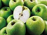長野県産 りんご グラニースミス grannysmith 12〜18個入り 4.5kg