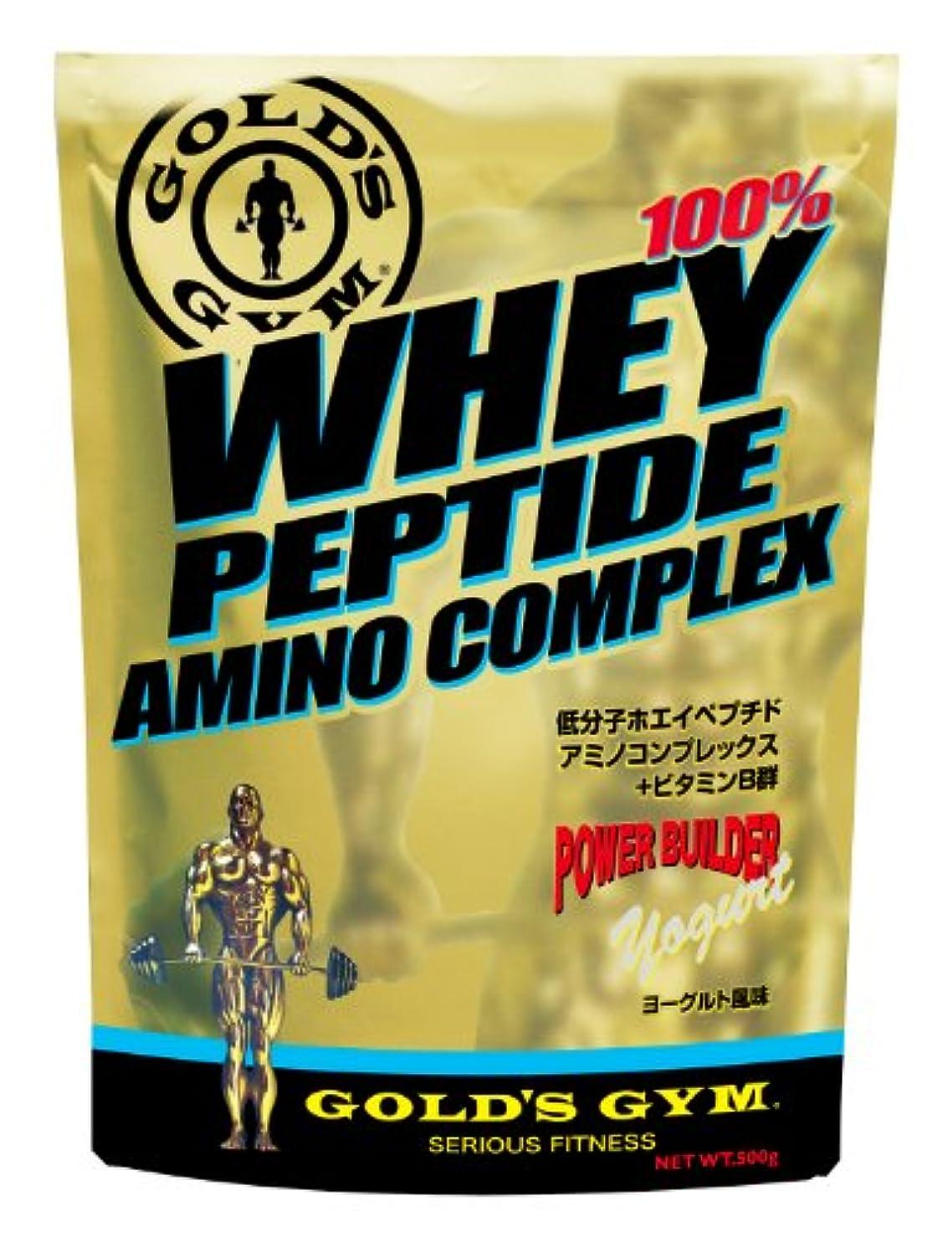 効果十年味付けGOLD'S GYM ホエイペプチド アミノコンプレックス ヨーグルト風味 500g