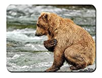ブラウンクマ、水、川、岩 パターンカスタムの マウスパッド 動物 (26cmx21cm)
