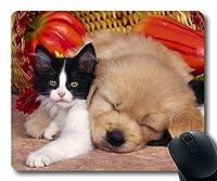 ゲームマウスパッド、かわいいおかしいパグ犬と猫、正確な縫い合わせ、耐久マウスパッド
