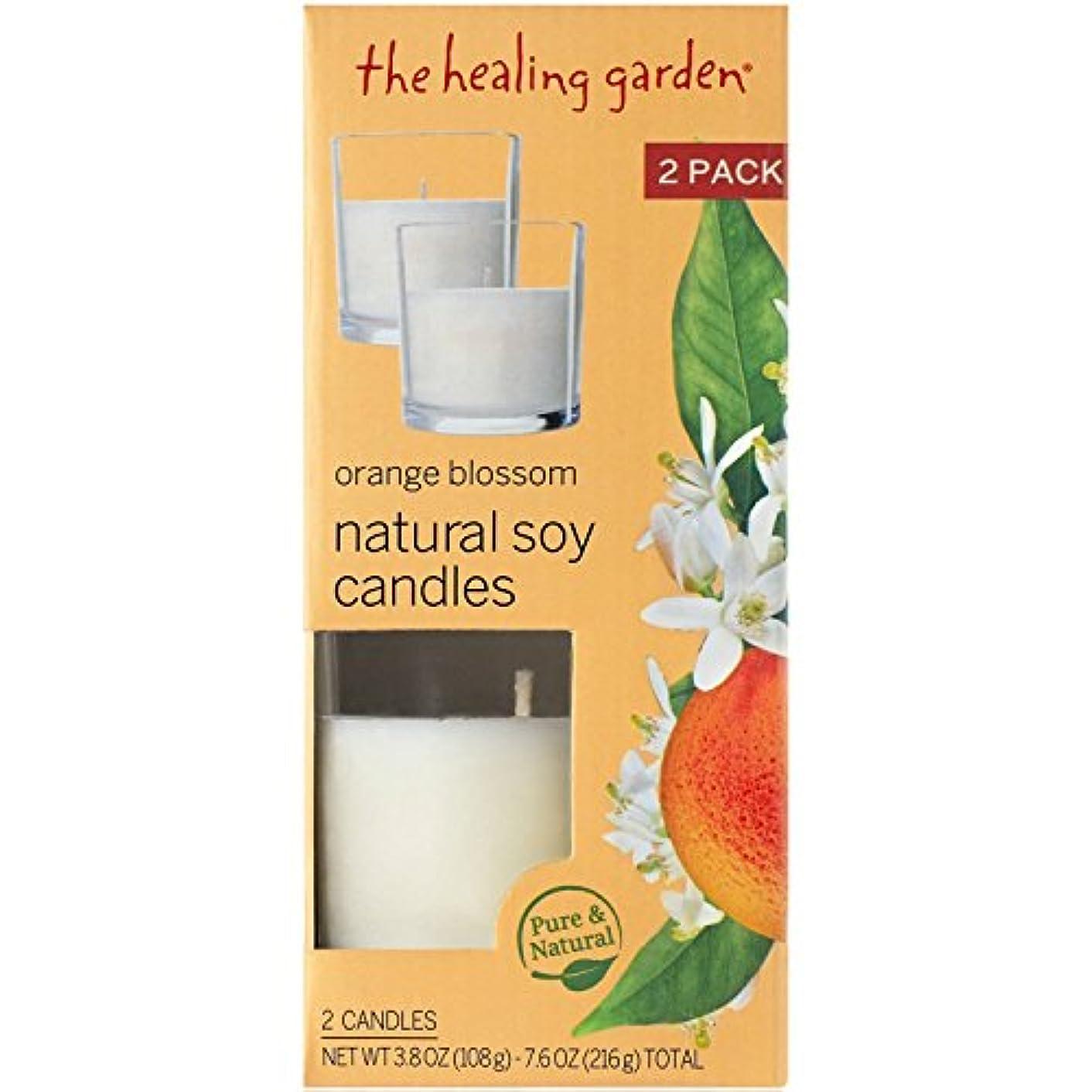 洗剤からコンデンサーGrocery/Ca ヒーリングガーデンオレンジブロッサムナチュラルソイキャンドル、3.8オンス、2カウント