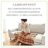 LIFEJOY 洗える 日本製 電気ひざ掛け 160cm×82cm ベージュ JBH161