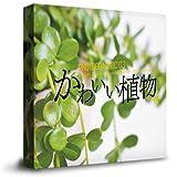 Amazon.co.jp商用OK!かわいい植物の写真素材集(かわいい,味わいのある植物を225枚以上収録)