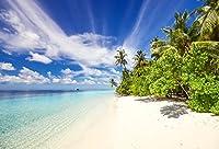 baociccoトロピカルSeaside Beach Palm Trees 7x 5ft Backdropクリア水ホワイトクラウドブルー海Skylineコットンポリエステル背景CoastalレジャーハワイアンNature Landscape大人Kid Photo Shoot