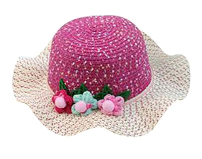 小さな女の子美しい太陽の帽子プリンセスの帽子夏のビーチの帽子 [B]