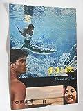 チコと鮫 1963年映画パンフレット・帝国劇場の館名入り初版 フォルコ・クイルチ監督 アル・カウエ