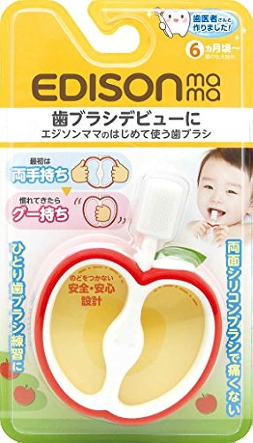 秋巨大精神医学KJC エジソンママ (EDISONmama) はじめて使う歯ブラシ 6ヶ月ごろから対象