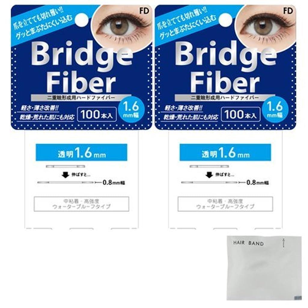 一晩ねじれ変装したFD ブリッジファイバーⅡ (Bridge Fiber) クリア1.6mm×2個 + ヘアゴム(カラーはおまかせ)セット