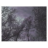 (ArtsAdd) ポスター アートプリン インテリア おしゃれ 部屋 リビング雑貨 Poster 11x8.5 インチ Purple Trees