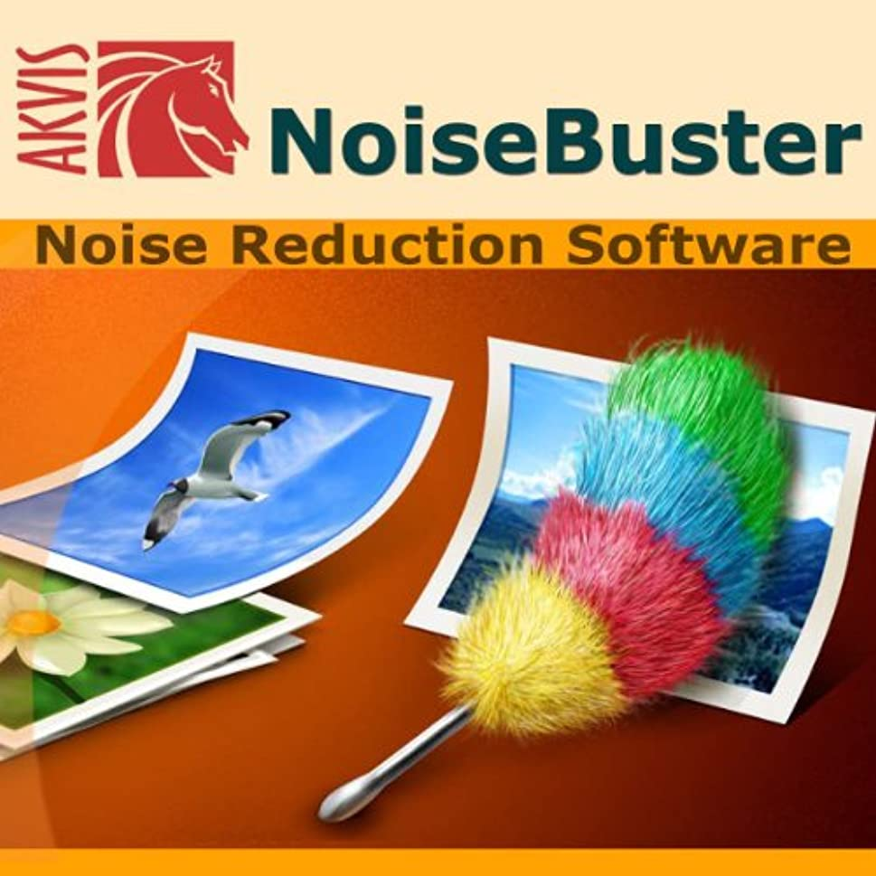 増幅器属する蒸気AKVIS Noise Buster プラグイン版 [ダウンロード]