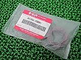 新品 スズキ 純正 バイク 部品 RGV250ガンマ オイルシール 09283-25091 RG250ガンマ