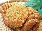 北海道産 毛ガニ 400g-500g 特特特 堅蟹 毛がに 1尾 3特 身入り確実