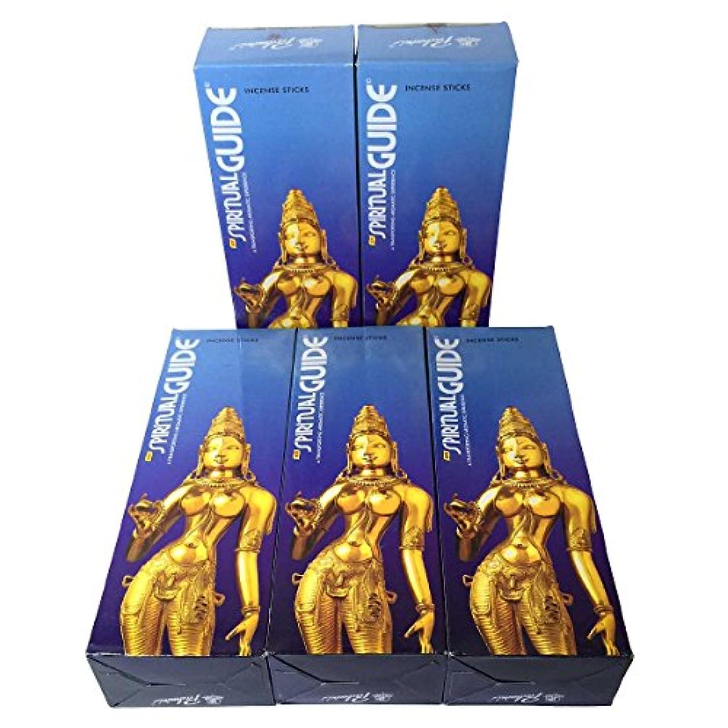 取り戻すフェードアウト治世スピリチュアルガイド香スティック 5BOX(30箱)/PADMINI SPIRITUALGUIDE インド香 / 送料無料 [並行輸入品]