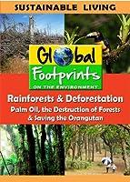 Rainforests & Deforestation, Palm Oil & Saving The Orangutan [DVD]