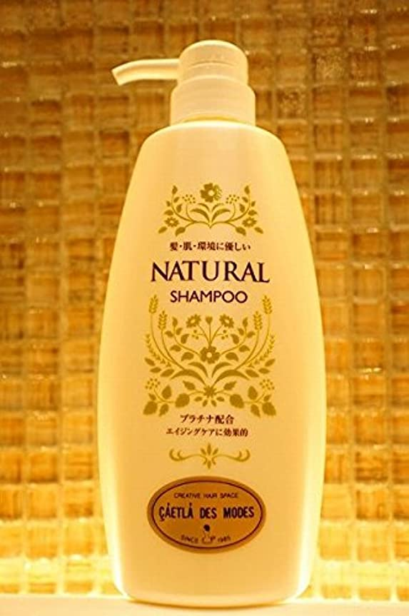 綺麗な考慮段階ÇÁETLÁ NATURAL シャンプー 550ml(花の香り)