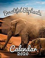 Beautiful Elephants Calendar 2020: Monthly Desk Calendar Featuring the World's Most Intriguing Mammal