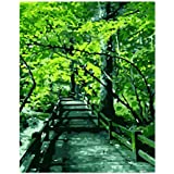 Beginner 16×20 inch Kit Kids Paint by Numbers Acrylic Green Tree Corridor Adults