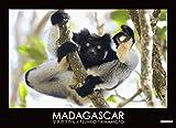 MADAGASCAR―マダガスカル