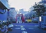 東京ブルー 画像