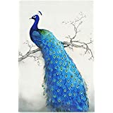 Starlit 71427 - Blue Peafowl DIY Diamond Painting Rhinestone Embroidery Kit Mosaic Painting Size 50x76 cm (20x30 inch)
