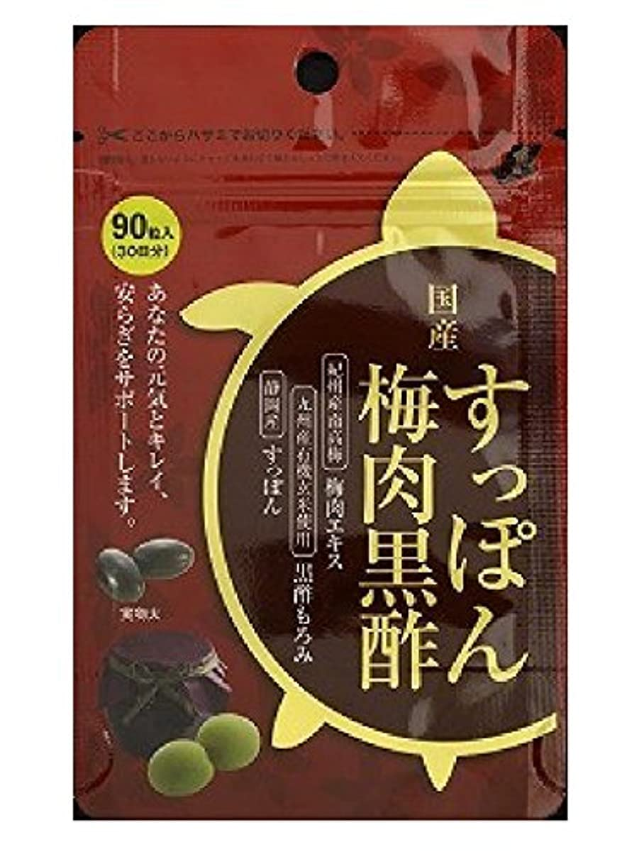 健全維持驚くべきORTIC 国産すっぽん梅肉黒酢 90粒