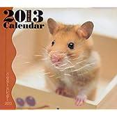 ミニカレンダーハムスター 2013 ([カレンダー])