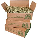 Viking Farmer Oat Hay for Rabbits and Small Pets, 5 lbs