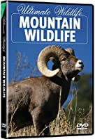 Ultimate Wildlife: Mountain Wildlife [DVD] [Import]