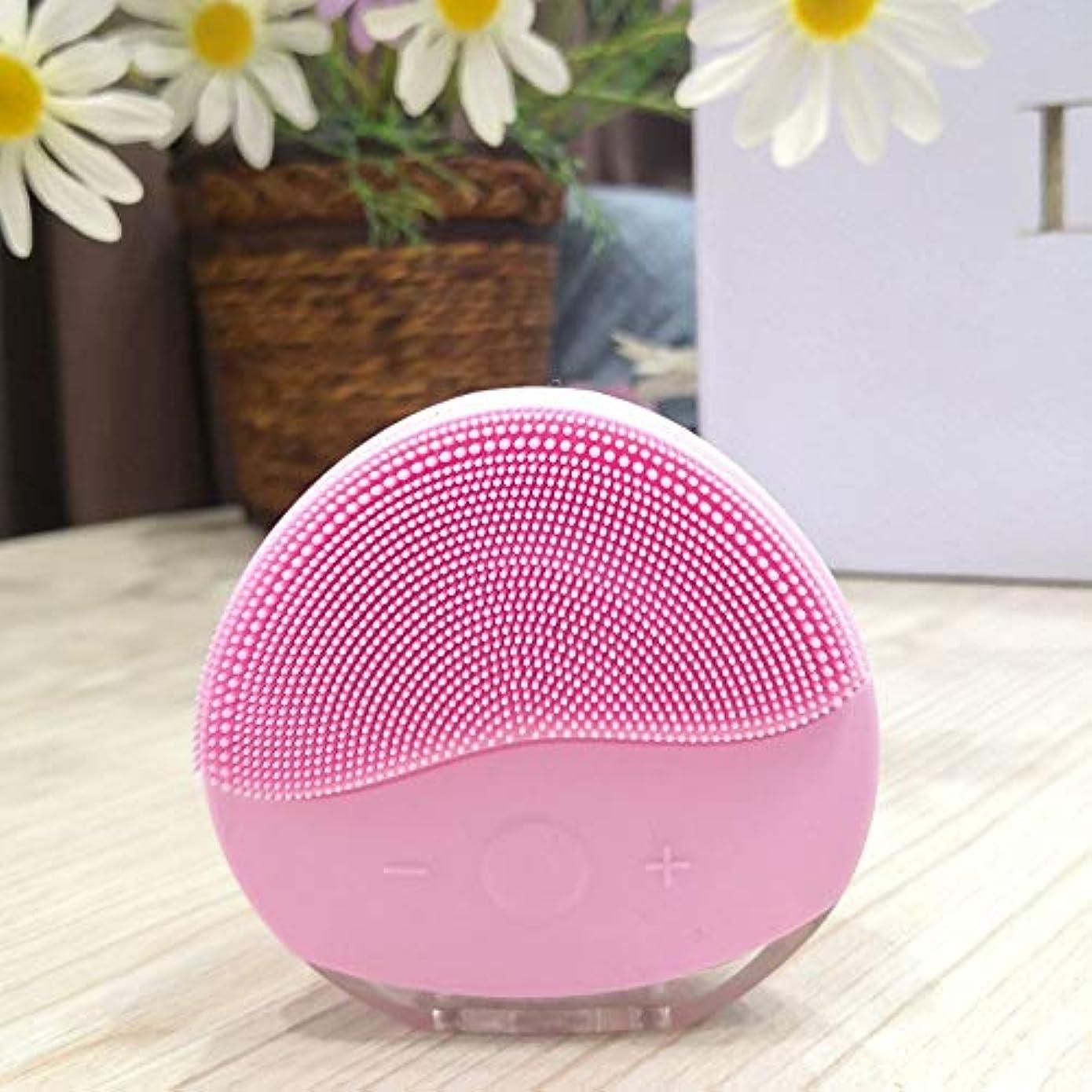 バインド匹敵しますブレースLYX 新エレクトリッククレンジング器、超音波防水多機能洗顔、ソニックシリコーン電気洗浄ブラシのUSB充電&防水女性ティーンガールメイクウォッシュ (Color : ピンク)