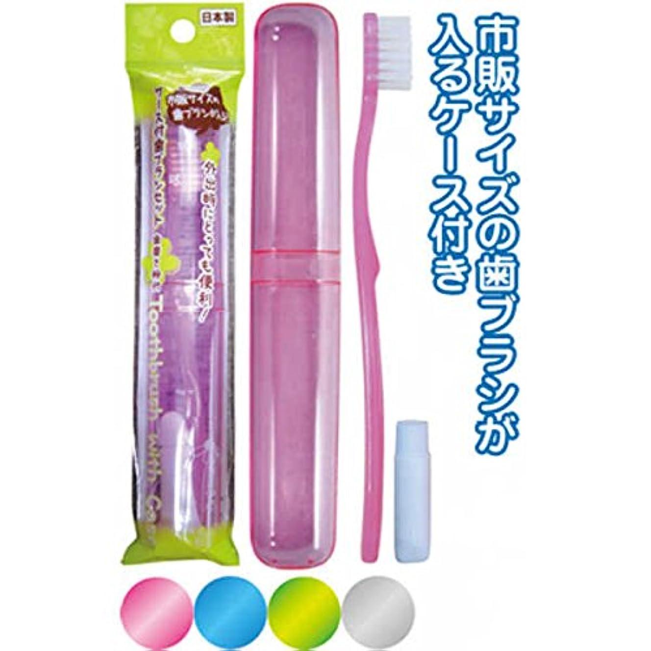 ここに当社作り上げる市販サイズが入るケース付歯ブラシ歯磨粉付 日本製 japan 【まとめ買い12個セット】 41-213