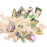 elaco Abalone Shellピース3dチャームネイルアートデコレーションスライスDIY Beauty Nail Decals M Elaco-CF247