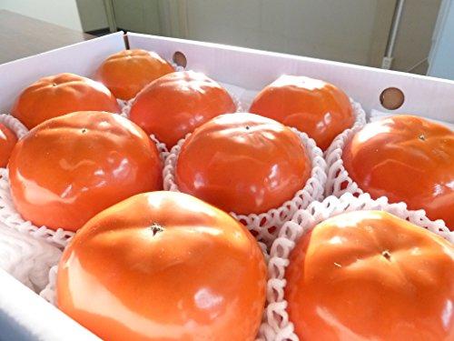 まぼろしの柿 陽豊
