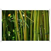 竹ステムのティンサイン 金属看板 ポスター / Tin Sign Metal Poster of Bamboo Stems