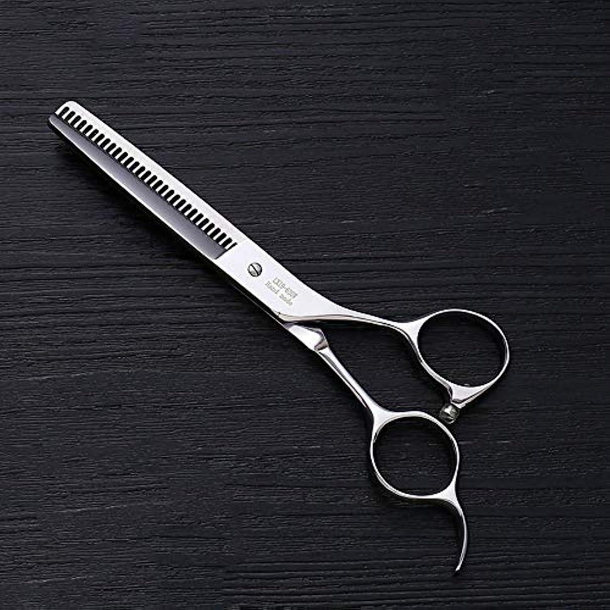 気づく資金靴下Hairdressing 6.0インチプロフェッショナルアントラー歯ステンレス鋼の歯はさみ理髪はさみヘアスタイリスト特別な理髪ツールヘアカットはさみステンレス理髪はさみ (色 : Silver)