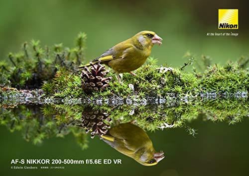 『Nikon 望遠ズームレンズ AF-S NIKKOR 200-500mm f/5.6E ED VR』の7枚目の画像