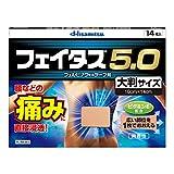 【第2類医薬品】フェイタス5.0大判サイズ 14枚