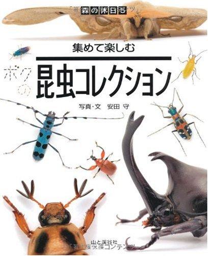 昆虫コレクション—集めて楽しむ (森の休日)