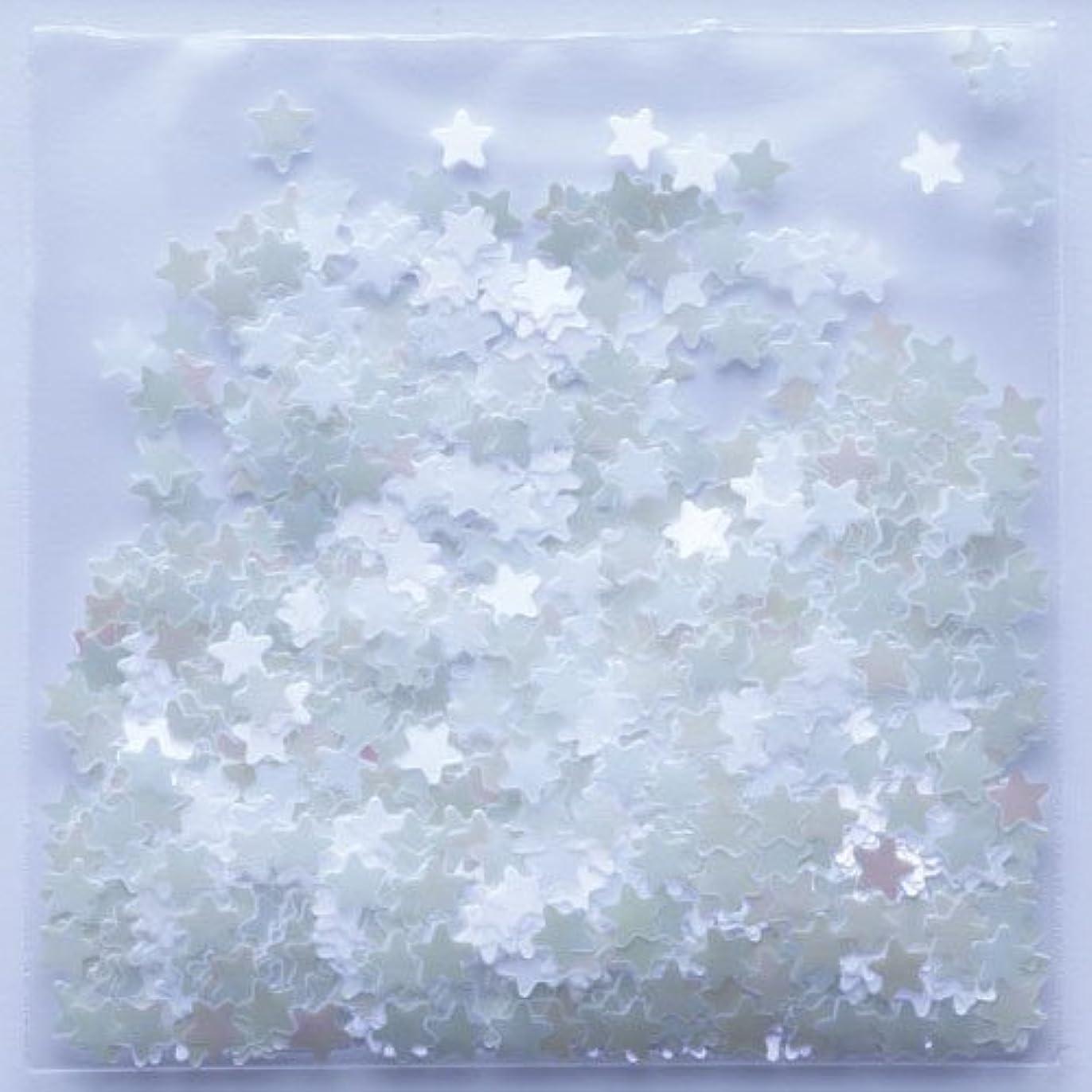 統合するインゲン乞食ピカエース ネイルアート 星パステル #172 ホワイトパープル 0.5g