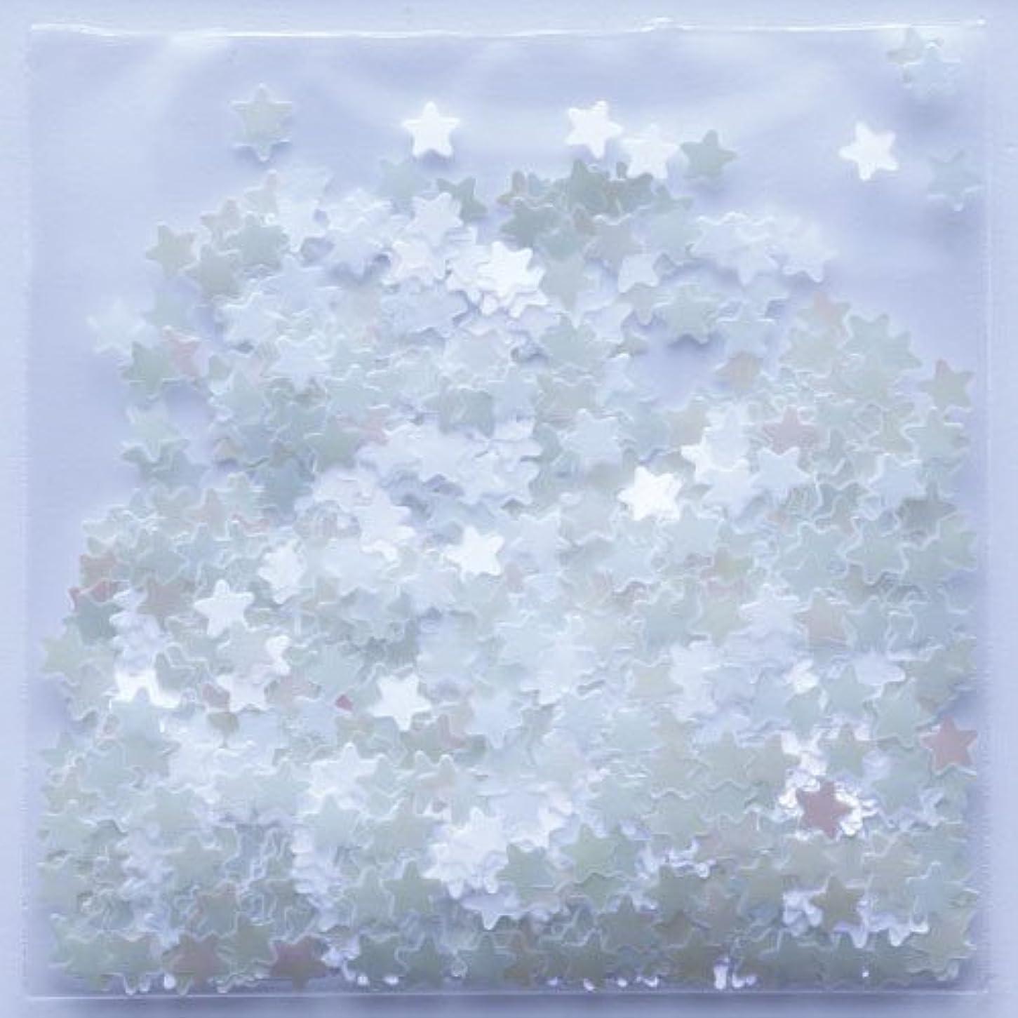 派生する醸造所生理ピカエース ネイルアート 星パステル #172 ホワイトパープル 0.5g