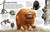DK Eyewitness Books: The Amazon 画像
