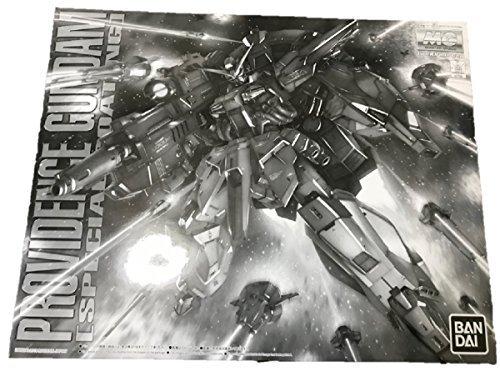 MG 1/100 プロヴィデンスガンダム [スペシャルコーティング] プラモデル 『機動戦士ガンダムSEED』より(ホビーオンラインショップ限定)