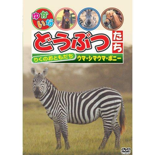 りくのおともだち 「ウマ・シマウマ・ポニー」 [DVD]