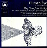 They Came from the Sky [12 inch Analog]