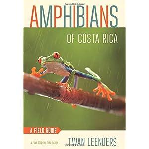 Amphibians of Costa Rica: A Field Guide (Zona Tropical Publications)