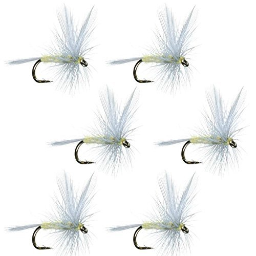 The Fly Fishing Place Pale Morning Dun–PMD–クラシックTrout Dry Fly Fishing Flies–セットof 6Fliesサイズ16