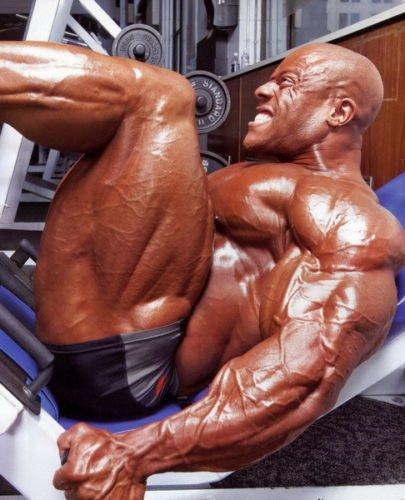 フィル・ヒースボディービルの筋肉のエクササイズは、24