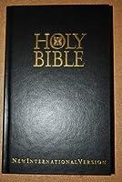 Holy Bible New International Version [並行輸入品]